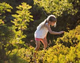 Jača isninski kontakt sa prirodom